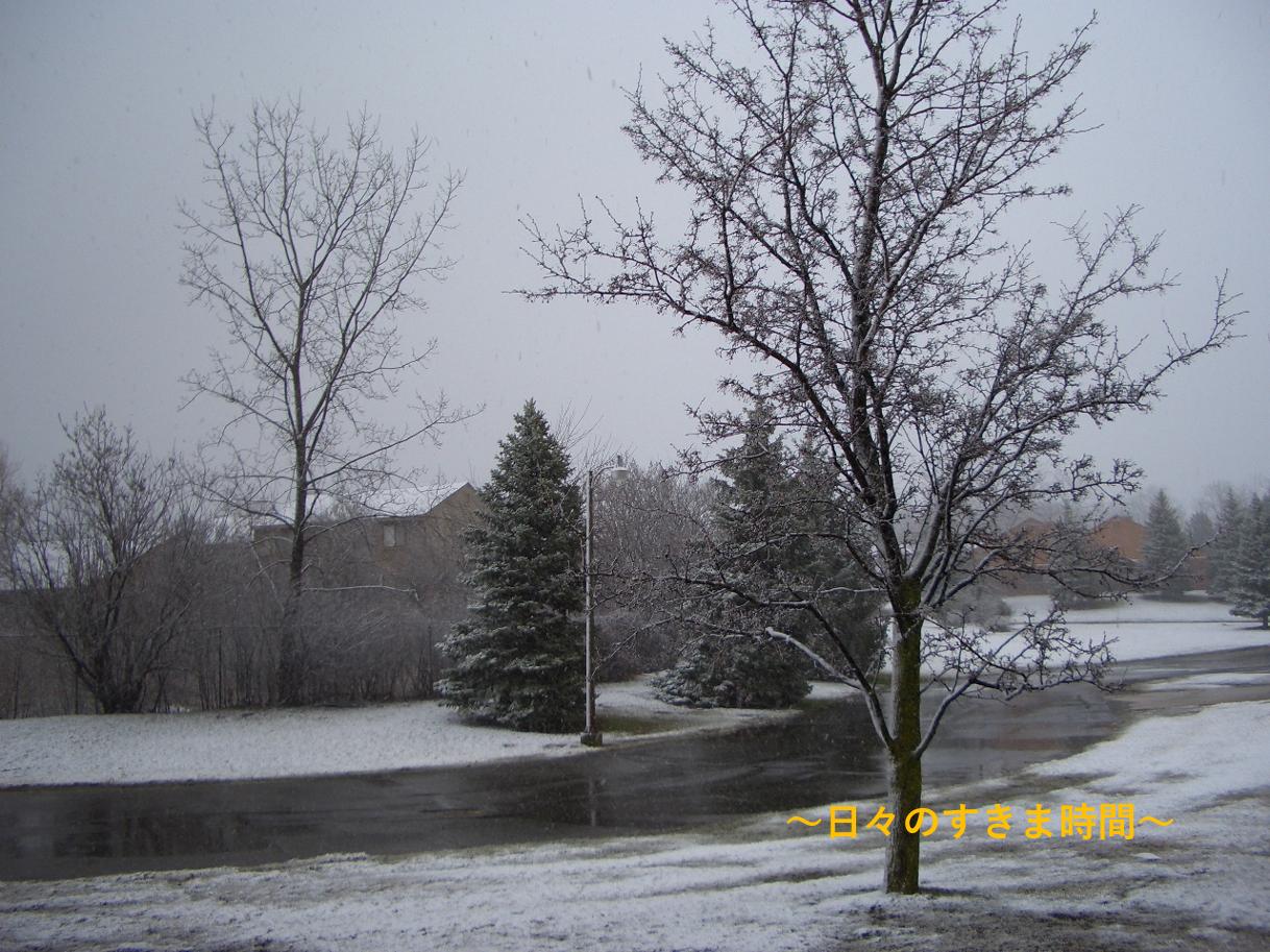ミシガンに雪が降る1