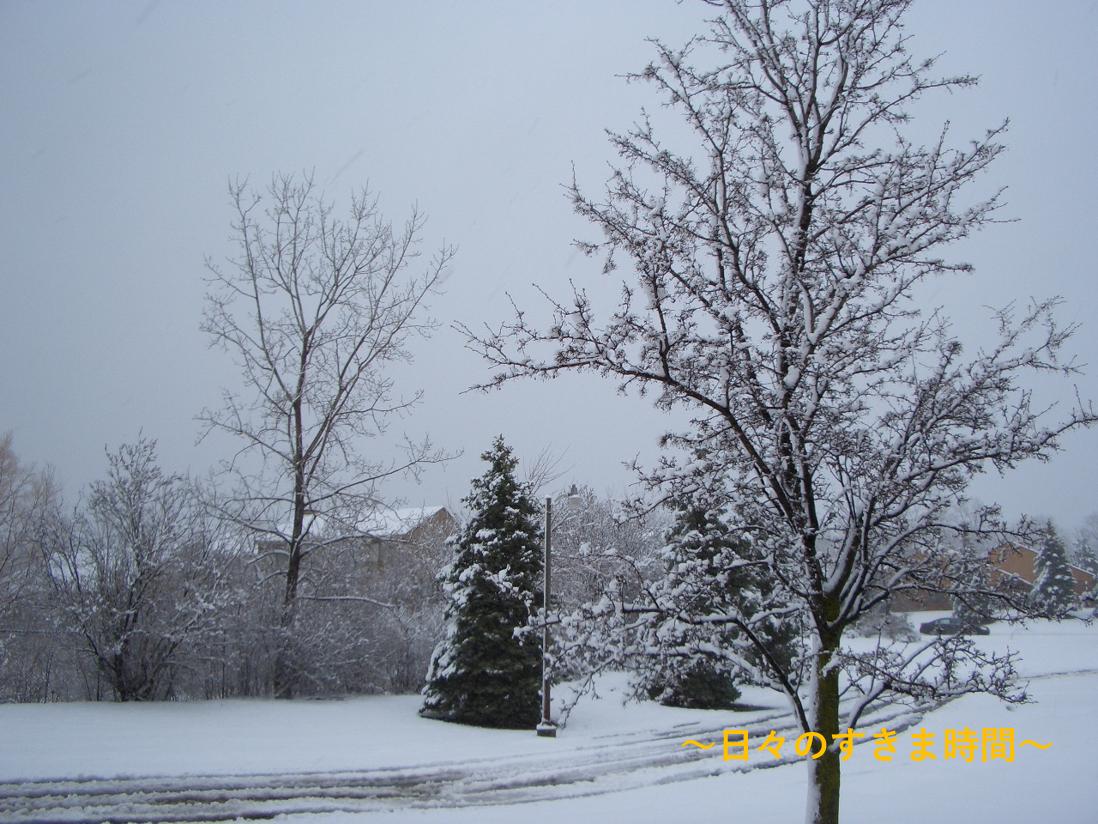 ミシガンに雪が降る2