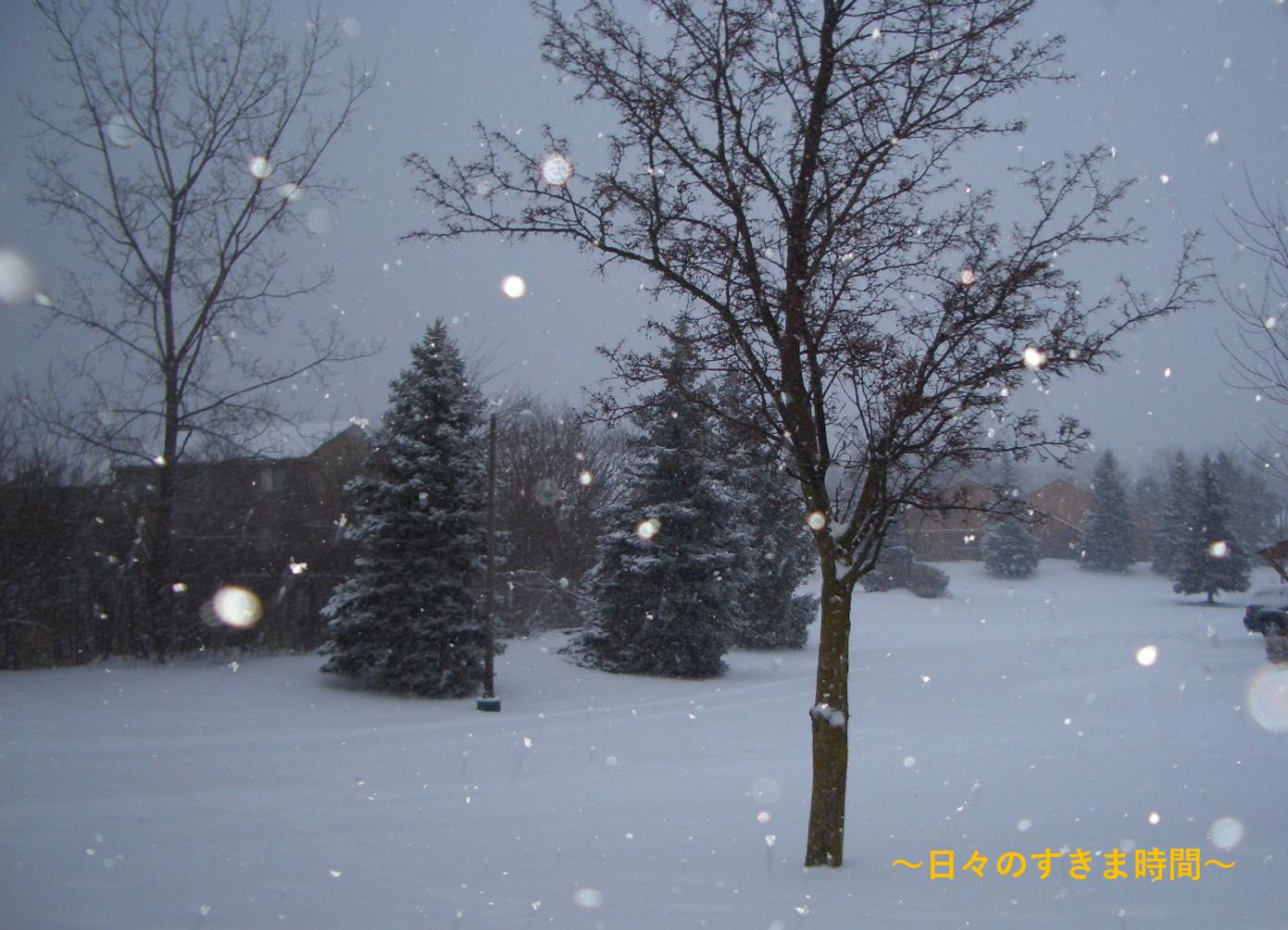 ミシガンに雪が降る3