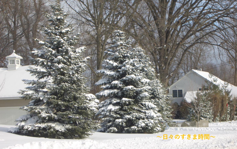雪の朝の景色
