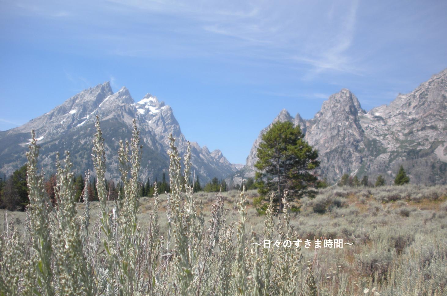 グランドティトン国立公園の景色