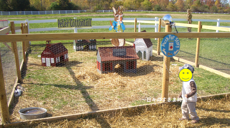 パンプキンパッチのウサギ小屋